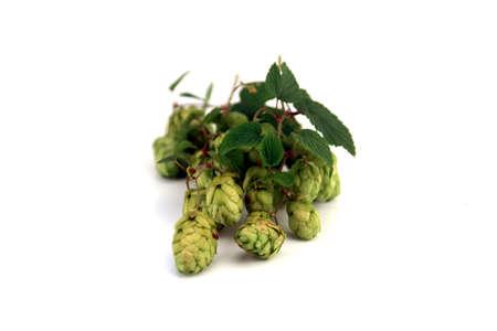 lithe: hop Stock Photo