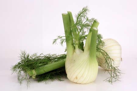 fennel Stock Photo