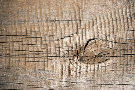 A background of old cracked wood pattern.  Stock Photo