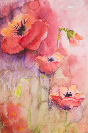 war paint: Poppies with pink and purple background