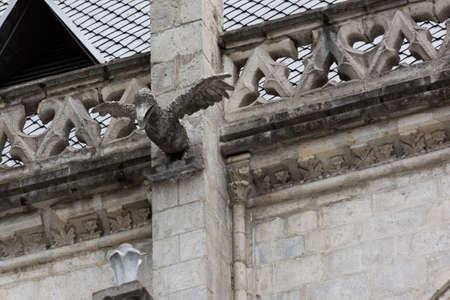 gargouille: Booby gargouille sur la Basilica del Voto Nacional Banque d'images