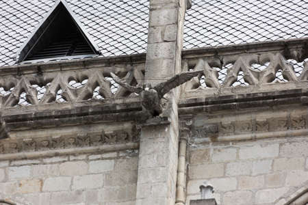 nacional: Condor gargoyle on the Basilica del Voto Nacional Stock Photo