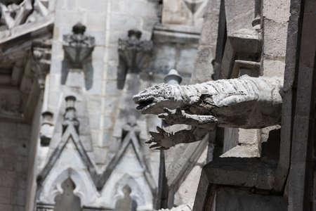 gargouille: gargouille L�zard sur la Basilique del Voto Nacional
