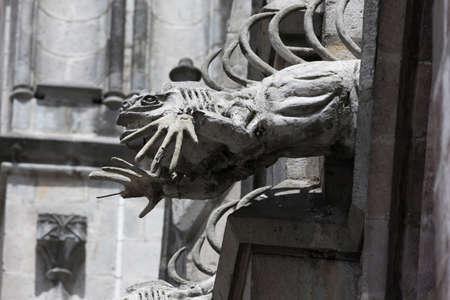 gargouille: Iguana gargouille sur la Basilique del Voto Nacional Banque d'images