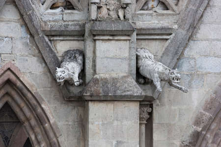 nacional: Pair of jaguar gargoyles on the Basilica del Voto Nacional