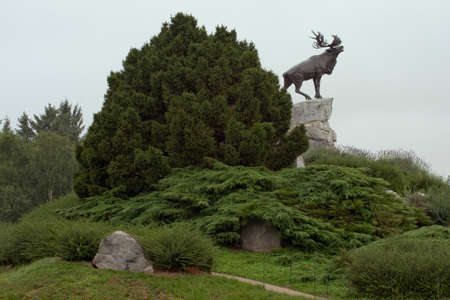 ww1: Reindeer at the top of the site