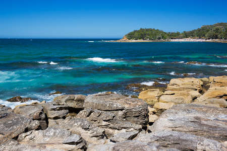 manly: Manly beach