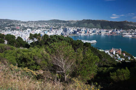 welly: Panorama over Lambton Harbour seen from Mount Victoria