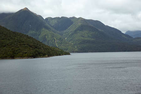 doubtful: Different shades of green in Doubtful Sound