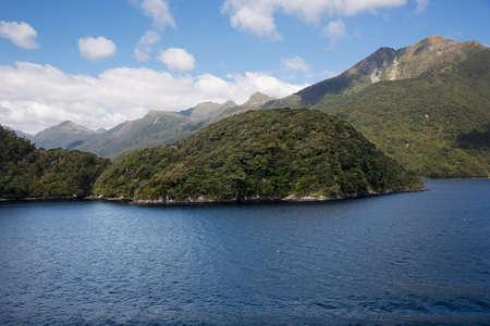 dusky: Lush vegetation on the slopes of Dusky Sound