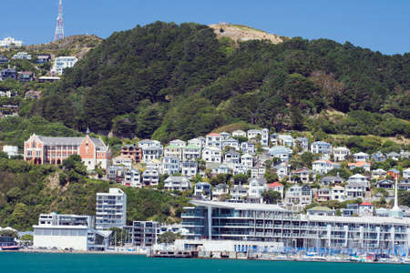 welly: Houses crammed against the hills near the waterfront Stock Photo
