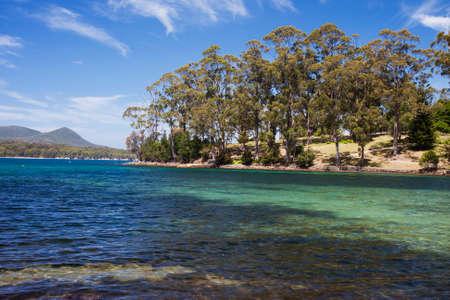 typology: Mason Cove y Carnarvon Bay