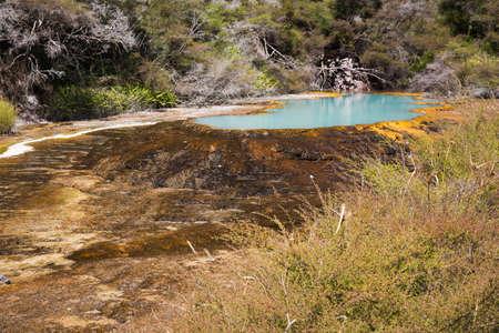 opal: Opal blue lake at Warbrick terrace