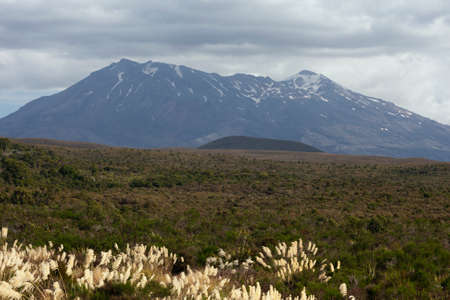 tongariro: The plains in front of Mount Tongariro Stock Photo