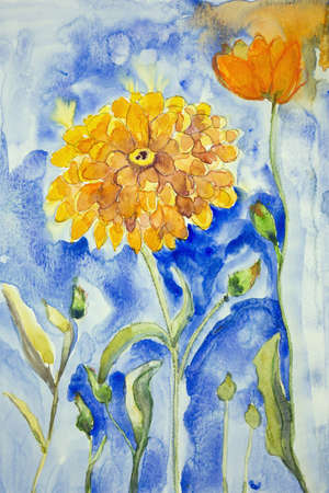 officinalis: marigold on a blue background. The dabbing technique gives a soft focus effect due to the altered surface roughness of the paper. Stock Photo