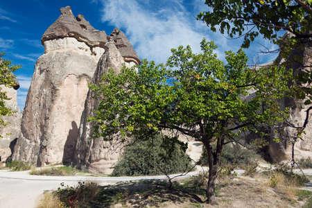 troglodyte: Fairy chimneys at Pasabag