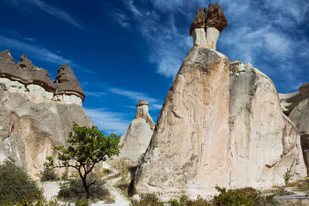 troglodyte: Mushroom capped fairy chimneys at Pasabag