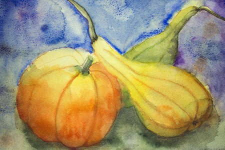 altered: Pumpkin and squash. The dabbing technique gives a soft focus effect due to the altered surface roughness of the paper. Stock Photo