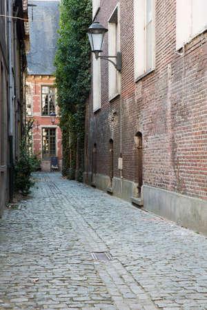 메 헬렌 (Mechelen)의 대도 (Grand Beguinage)에있는 거리