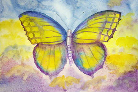 Yellow and blue butterfly. The dabbing technique gives a soft focus effect due to the altered surface roughness of the paper. Standard-Bild