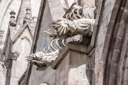 nacional: Pair of iguana gargoyles on the Basilica del Voto Nacional Stock Photo