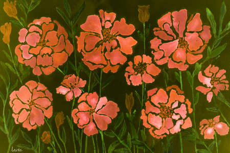 Impression of flamingo pink marigold on a dark green background. The dabbing technique gives a soft focus effect due to the altered surface roughness of the paper.