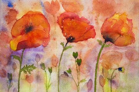 world war 1: Colorfull poppies and buds. The dabbing technique near the edges gives a soft focus effect due to the altered surface roughness of the paper.