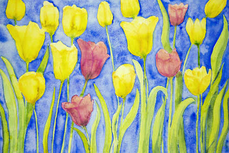 aquarelle painting art: Yellow and red tulips on a blue background. The dabbing technique near the edges gives a soft focus effect due to the altered surface roughness of the paper. Stock Photo