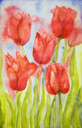 aquarelle painting art: Bouquet of tulips in a field. The dabbing technique near the edges gives a soft focus effect due to the altered surface roughness of the paper. Stock Photo