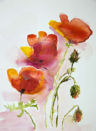 altered: Three poppies against a white background. The dabbing technique near the edges gives a soft focus effect due to the altered surface roughness of the paper. Stock Photo