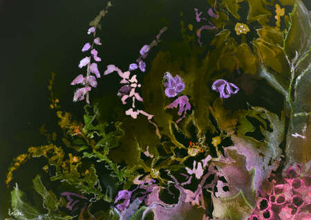 impression: Impression of a mix of wild flowers against a night sky. The dabbing technique near the edges gives a soft focus effect due to the altered surface roughness of the paper. Stock Photo