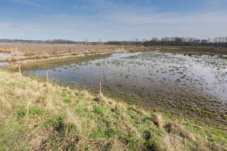 Uitzicht op de moerassen, het Mechels Broek Stockfoto