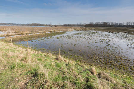 quagmire: View of the marshland, the Mechels Broek