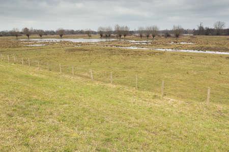 quagmire: Pools and puddles in the marshland around Mechelen Stock Photo