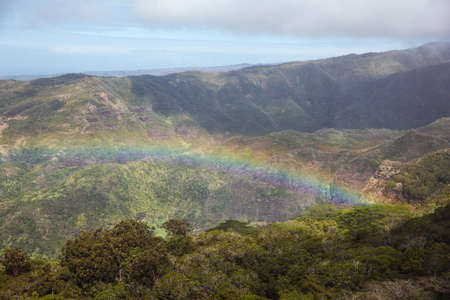desaturated colors: Rainbow over Kauai. Due to the rainy weather, colors of distant objects are desaturated