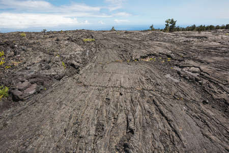 viscosity: Pahoehoe lava leading to the horizon. The ropy structure creates lines that lead to the horizon.