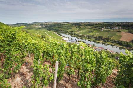 poblíž: Údolí Moselle v Lucembursku poblíž Wormeldange