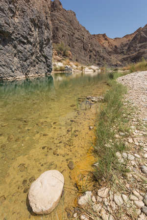 Sparse vegetation along the water in the Wadi Al-Arbaeen in Oman Stock Photo