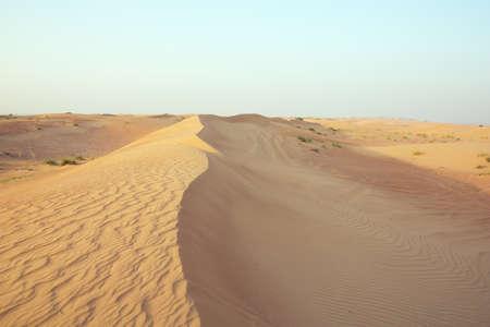 rehabilitated people: Sand dune ridge with wind marks in the Dubai desert