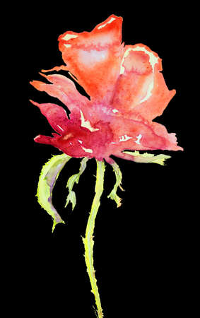 Side view of a naive rose against a black background. The dabbing technique near the edges gives a soft focus effect due to the altered surface roughness of the paper. Stock Photo