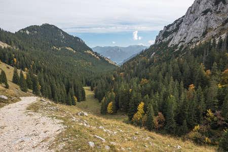 From Wendelstein through the forest to Brannenburg in the Chiemgau Alps