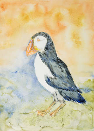 Puffin on an orange and blue background. The dabbing technique near the edges gives a soft focus effect due to the altered surface roughness of the paper. Banque d'images - 98102401