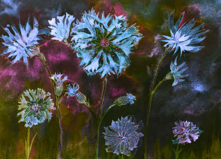 Corn flowers with buds at night. The dabbing technique near the edges gives a soft focus effect due to the altered surface roughness of the paper. Stock Photo
