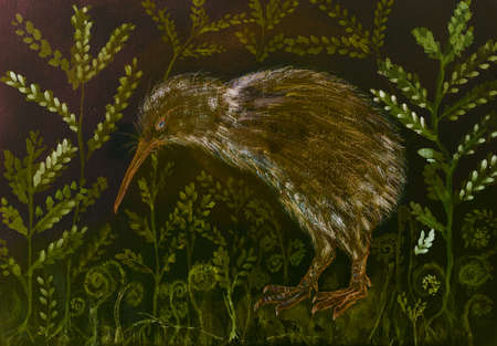 Kiwi bird in the night with background of varen and leaves. The dabbing technique near the edges gives a soft focus effect due to the altered surface roughness of the paper. Reklamní fotografie