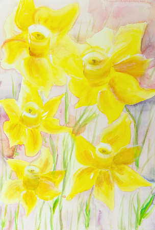 Bright yellow daffodils on a pink background. The dabbing technique gives a soft focus effect due to the altered surface roughness of the paper. Standard-Bild - 98435244