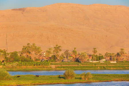 Passing Ezbet El-Gawad at the golden hour, seen while navigating on the Nile