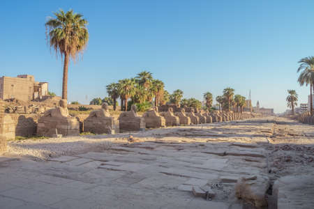 Looking into the Avenue of the Sphinxes at the Temple of Karnak Foto de archivo