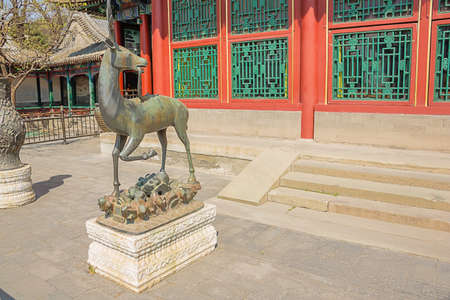 Bronze deer seen from the side in the Summer Palace, the former imperial garden Фото со стока