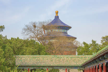 Next to the Long Corridor leading to the Temple of Heaven in Beijing