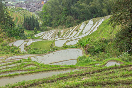 Rice terraces next to a forest at Pingancun village in the Longsheng area near Guilin Stock fotó